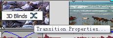 Transition Properties