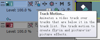 Video track information header