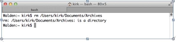 Guia para Excluir Arquivos Usando a Linha de Comandos